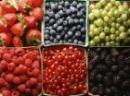 Frutafill a iné plnky