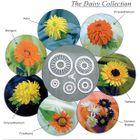 Vykrajovačka na lupienkové kvety - set