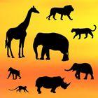 Patchwork - rôzne zvieratá SAFARI
